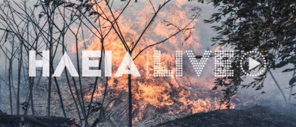 Μεγάλη φωτιά στην Ηλεία