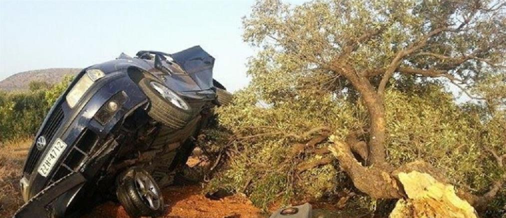 Η ελιά σταμάτησε την τρελή πορεία αυτοκινήτου στην Κρήτη (φωτό)