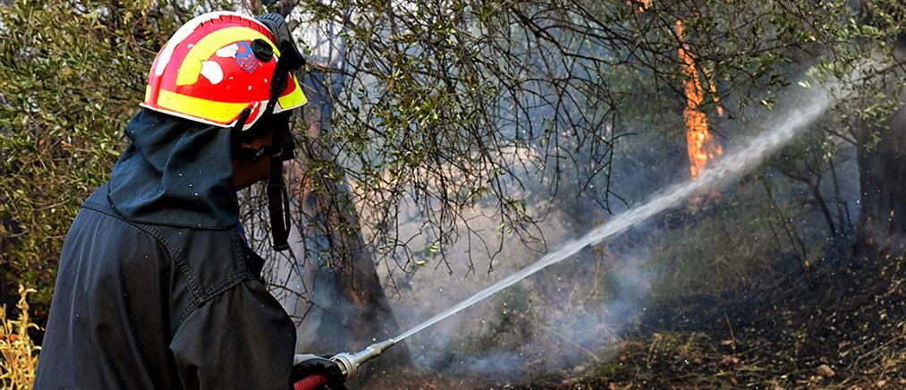 Μεγάλη φωτιά στο Σοφικό Κορινθίας - Απειλούνται οικισμοί (βίντεο)