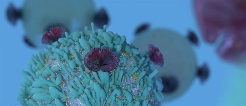 3+1 ερωτήσεις για τις νεότερες εξελίξεις στη θεραπεία του καρκίνου