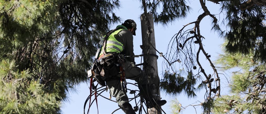 """ΔΕΔΔΗΕ - """"Μήδεια"""": πόσα νοικοκυριά εξακολουθούν να αντιμετωπίζουν προβλήματα ηλεκτροδότησης"""