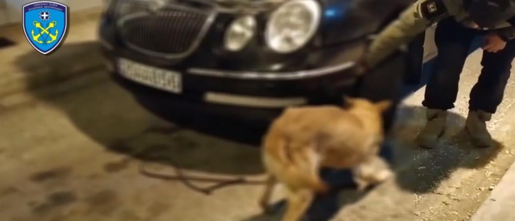 Σκύλος του Λιμενικού βρήκε όπιο κρυμμένο σε αυτοκίνητο (βίντεο)