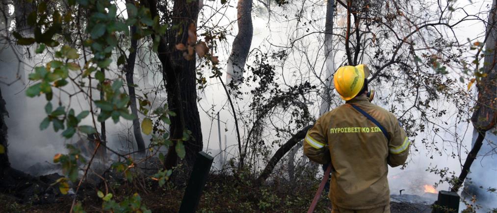 Φωτιά στην Αχαΐα: Τραυματίες μεταφέρθηκαν σε νοσοκομεία