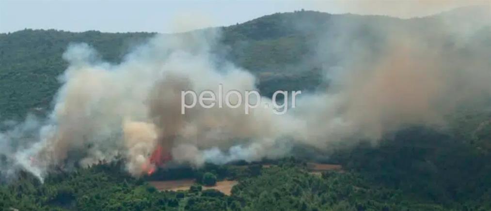 Αχαΐα – Φωτιά στην Δροσιά: Εντολή εκκένωσης του οικισμού (εικόνες)