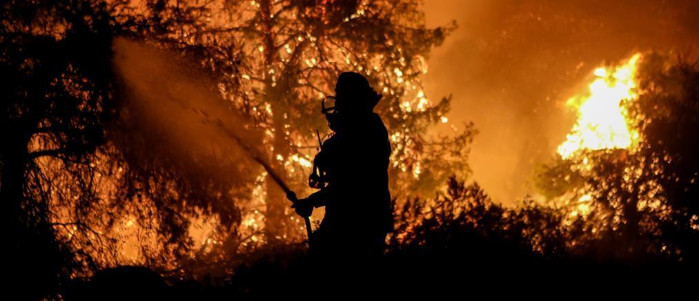 Φωτιά στον Έβρο: Εξαπλώθηκε στο δάσος της Δαδιάς