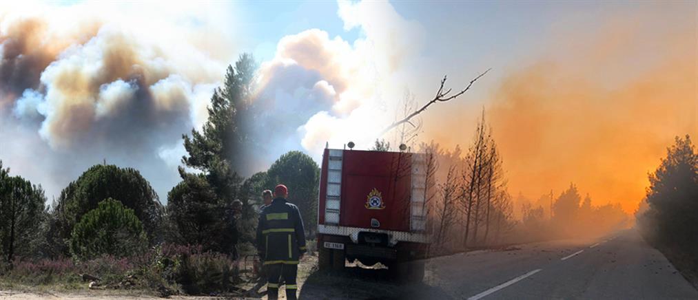 Δασικές φωτιές: μάχη σε πολλά μέτωπα από την Πυροσβεστική