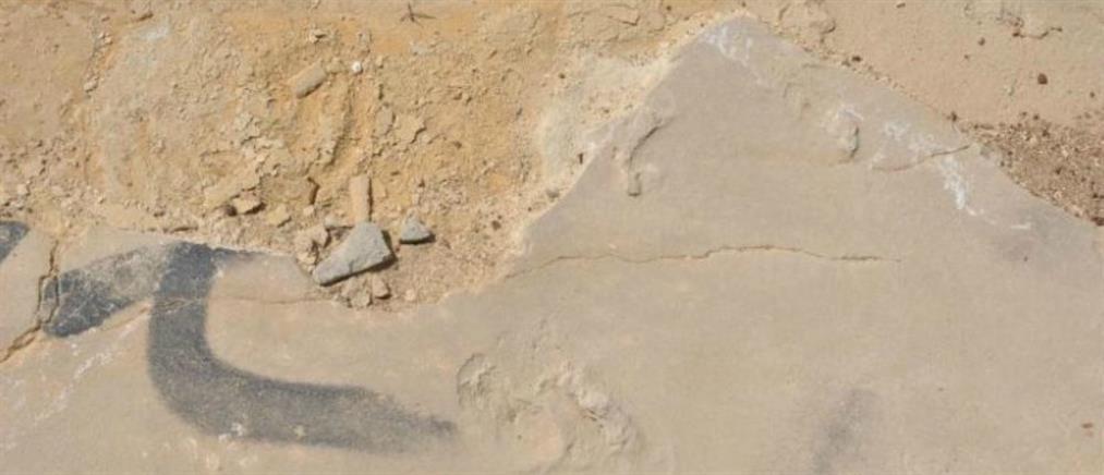 Ο εκπαιδευτικός για τα απολιθωμένα ίχνη: τα πήρα για να διακοσμήσω το σπίτι μου...