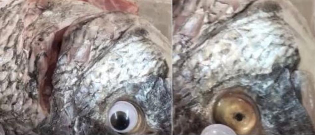 Εστιατόριο κολλούσε ψεύτικα πλαστικά μάτια στα ψάρια για να φαίνονται ...φρέσκα!