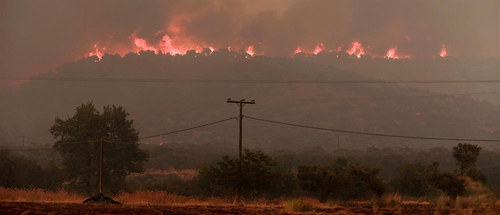 Φωτιές: Σε Γενική Επιφυλακή η Πυροσβεστική την Τετάρτη