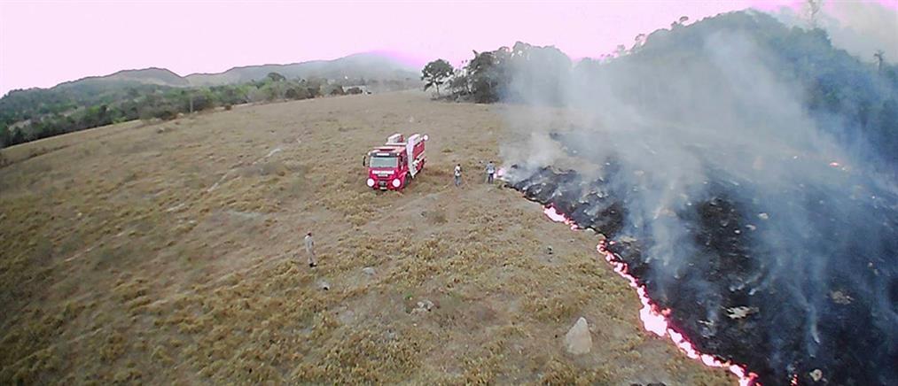 Φωτιά στον Αμαζόνιο: ανυπολόγιστη η οικολογική καταστροφή (εικόνες)