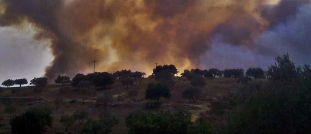 Συνελήφθη καταζητούμενος για τις φονικές πυρκαγιές στην Ηλεία το 2007