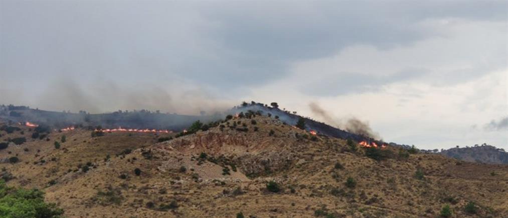Πυρκαγιά στην Χίο (εικόνες)