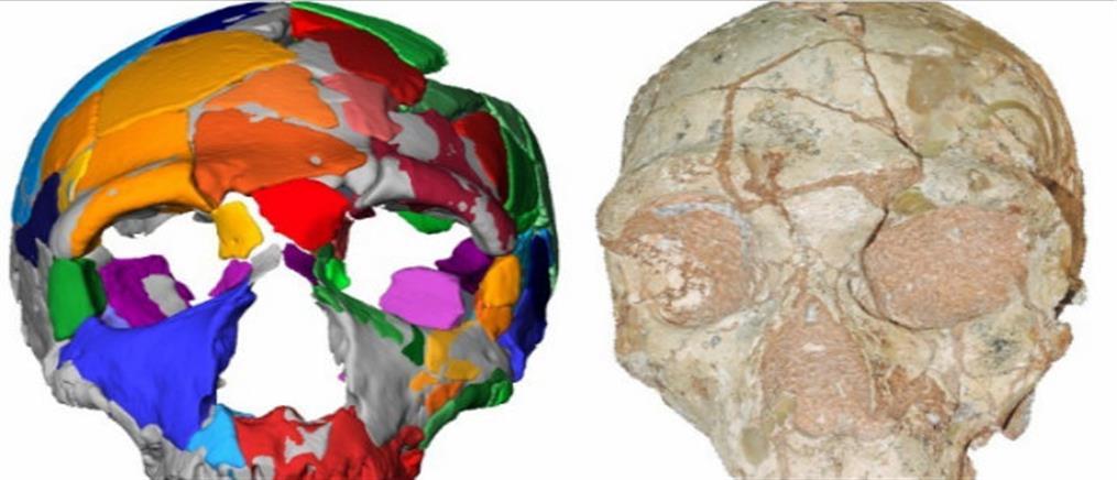 Στην Ελλάδα βρέθηκε το αρχαιότερο κρανίο Homo Sapiens της Ευρασίας