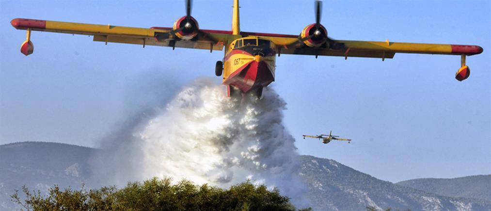 Μεγάλη πυρκαγιά στο Σκουτάρι