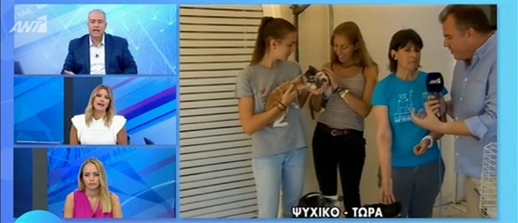 Ιδιοκτήτες κατοικιδίων εγκαταλείπουν τα ζώα τους και πάνε διακοπές (βίντεο)
