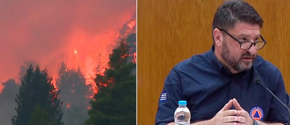 Φωτιές: ο Χαρδαλιάς για τον απολογισμό και την διεθνή βοήθεια