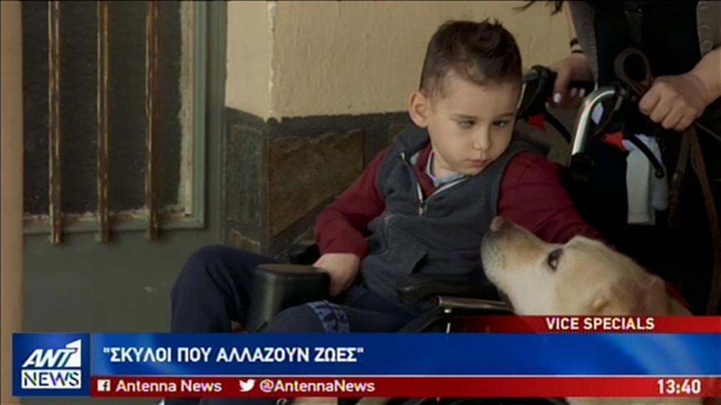 VICE Greece: Σκύλοι που Αλλάζουν Ζωές