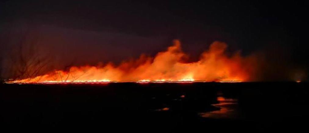 Φωτιές σε Μαραθώνα, Αρκαδία και Αχαΐα