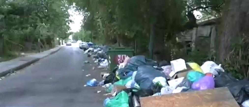 Αγανάκτηση για τα σκουπίδια στην Κέρκυρα (βίντεο)