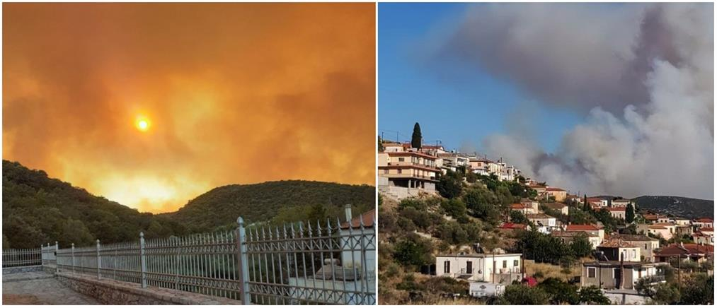 """""""Μάχη"""" με τις φλόγες στην Μάνη (εικόνες)"""