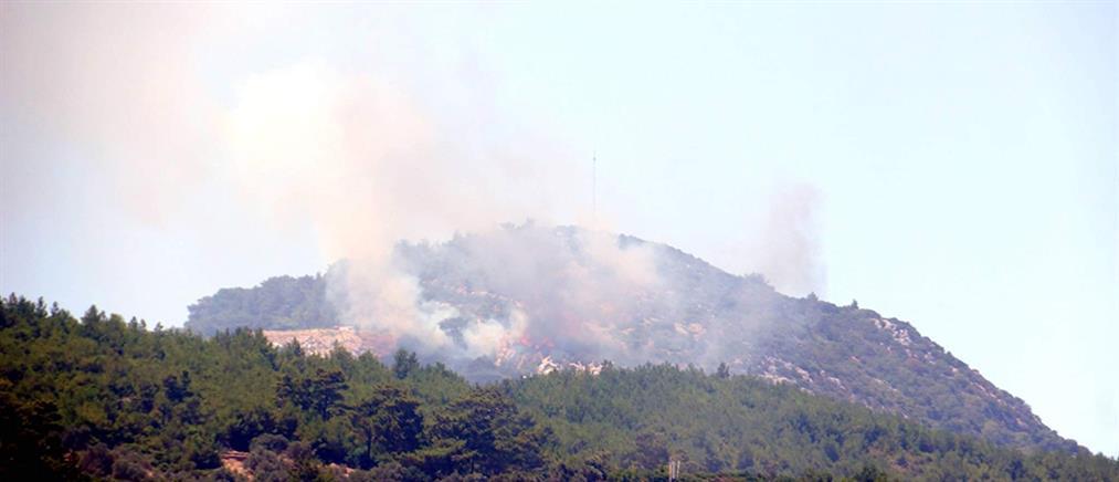 Σάμος: Φωτιά στους Βουρλιώτες (εικόνες)