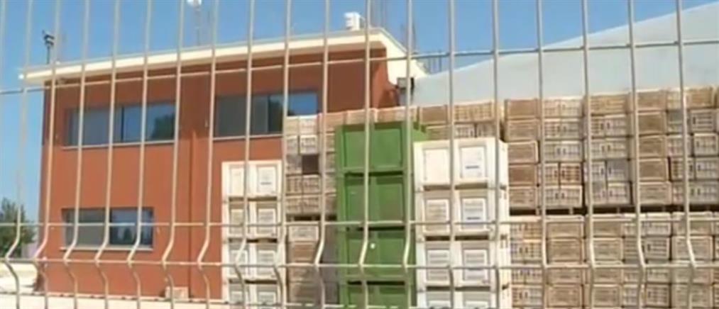 Κορονοϊός: Κρούσματα σε συσκευαστήριο φρούτων (βίντεο)