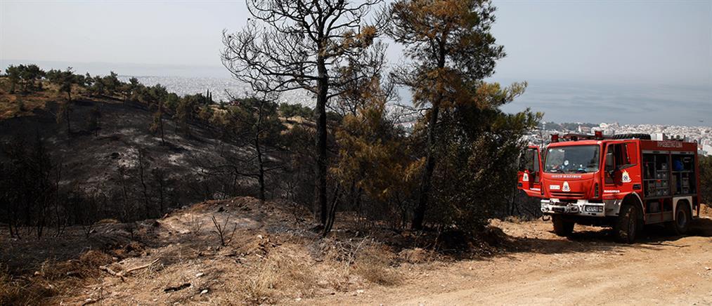 Θεσσαλονίκη: ολονύκτια επιφυλακή στο Σέιχ Σου μετά τη φωτιά
