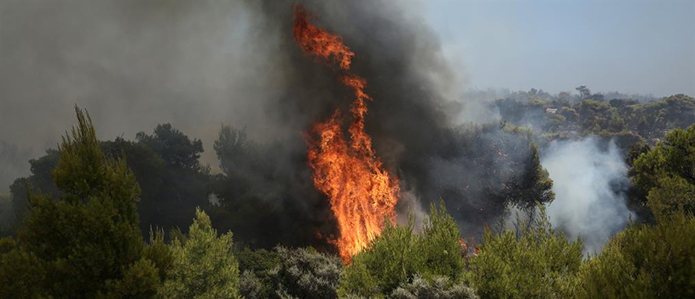 ΓΓΠΠ: προειδοποίηση για πολύ υψηλό κίνδυνο πυρκαγιάς