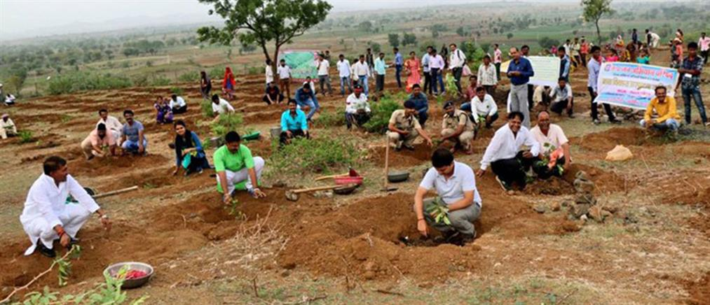Φύτεψαν 66 εκατ. δέντρα σε 12 ώρες για καλό σκοπό και ρεκόρ Γκίνες (φωτό)