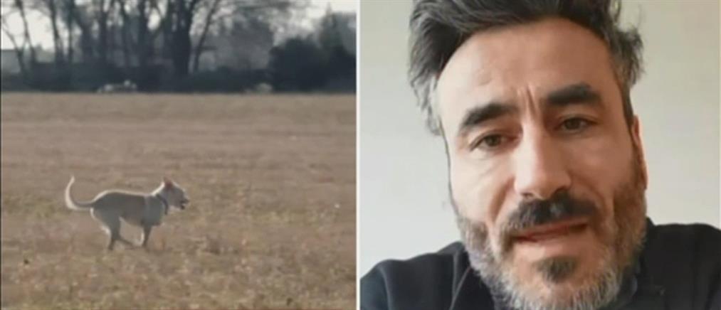 Γιώργος Μαυρίδης: Η συγκινητική ταινία για τα αδέσποτα ζώα (βίντεο)