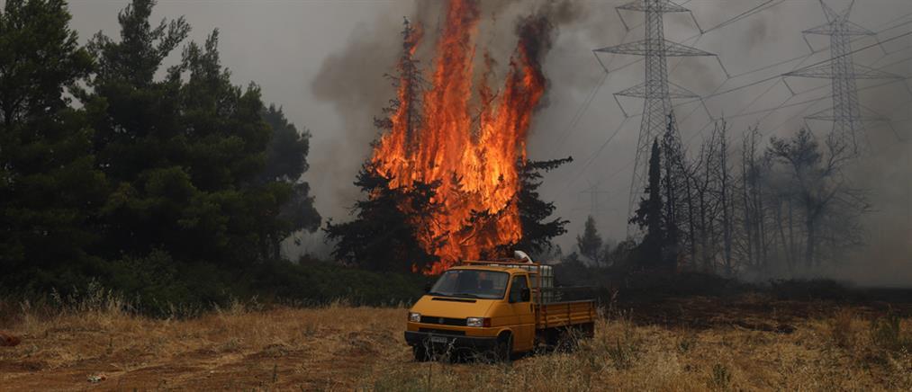 Φονική φωτιά στην Αττική: Νεκρός κάτοικος στην Ιπποκράτειο Πολιτεία