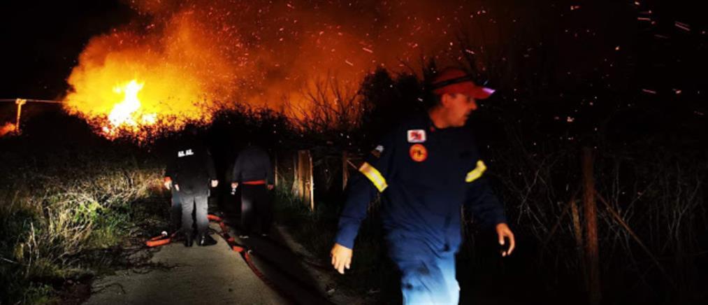 Μεγάλη φωτιά στην Αργολίδα (εικόνες)