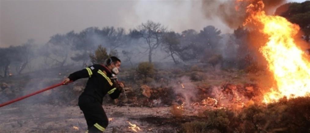 Κιλκίς: Φωτιά στην Παιονία