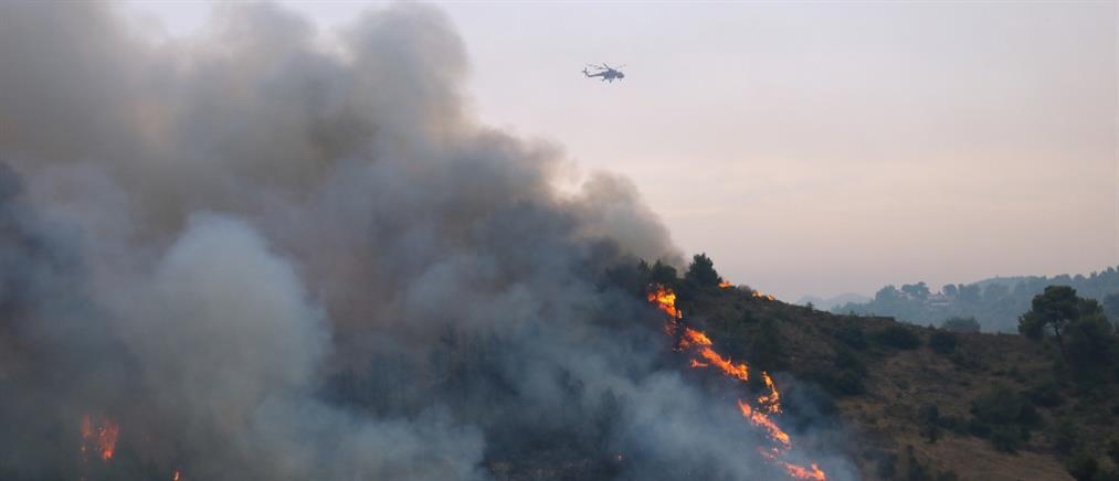 Φωτιά στην Αττική: Στις Αφίδνες το μεγάλο πύρινο μέτωπο