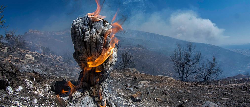 Συνεχίζονται οι μάχες με τις φλόγες σε Λακωνία, Υμηττό, Μαλακάσα και Αργολίδα
