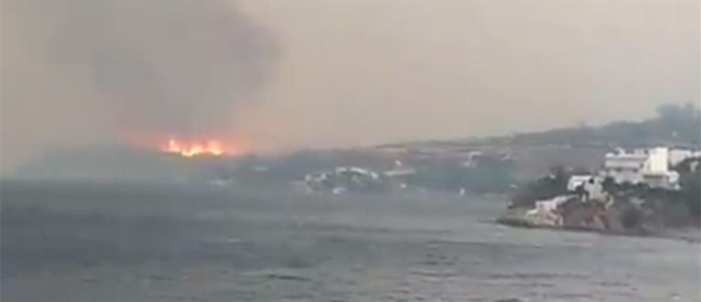 Φωτιά στην Εύβοια: Μαίνεται το πύρινο μέτωπο κοντά στο Μαρμάρι (βίντεο)