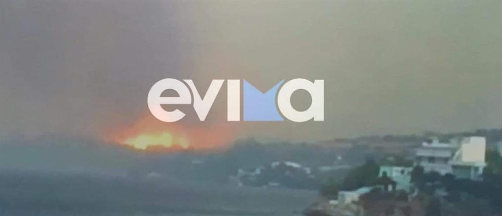Φωτιά στην Εύβοια: Εντολή εκκένωσης στο Μαρμάρι (βίντεο)