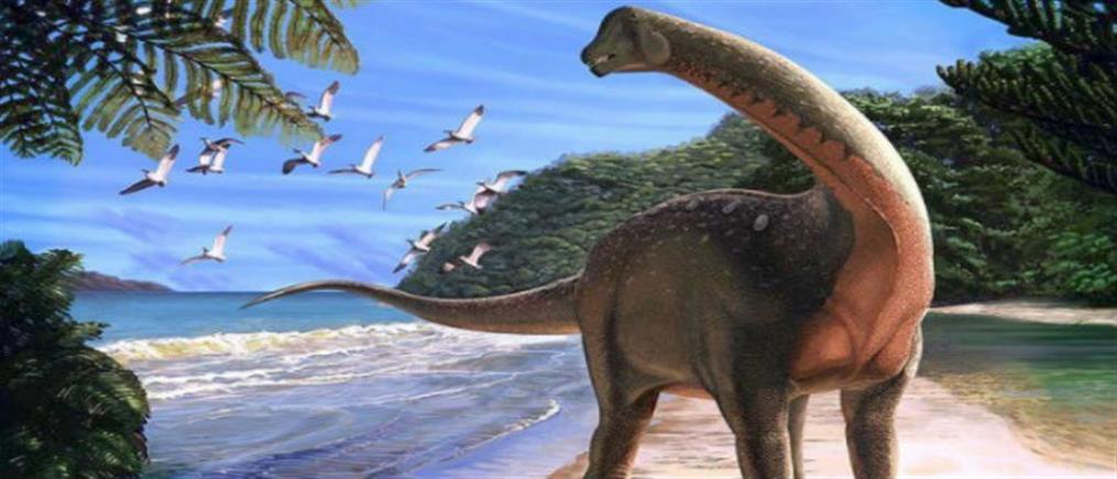 Ανακαλύφθηκε στην Αίγυπτο σπάνιο απολίθωμα δεινόσαυρου