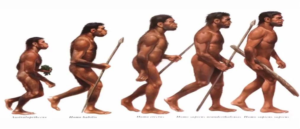 Δαρβίνος… γιοκ στα σχολεία