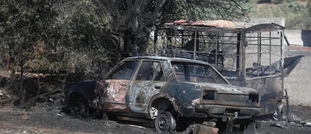 Φωτιά στα Καλύβια: καμμένα σπίτια, καταστροφές και απόγνωση (εικόνες)