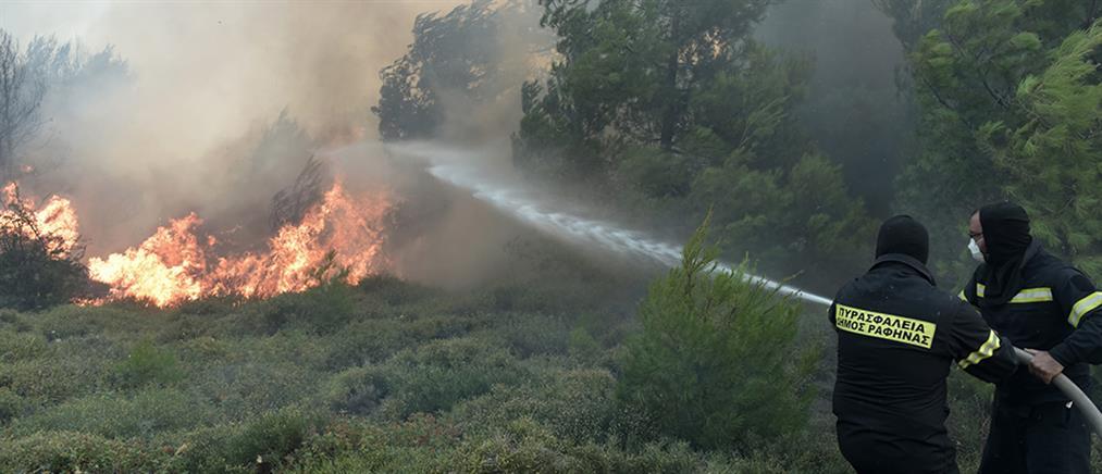 Μάχη με τις φλόγες σε Κάλαμο, Καπανδρίτι, Βαρνάβα και Γραμματικό (βίντεο)