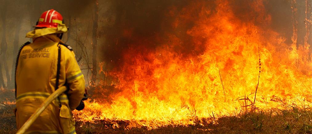 Αυστραλία: Οι πυρκαγιές κατέστρεψαν το ένα πέμπτο των δασών