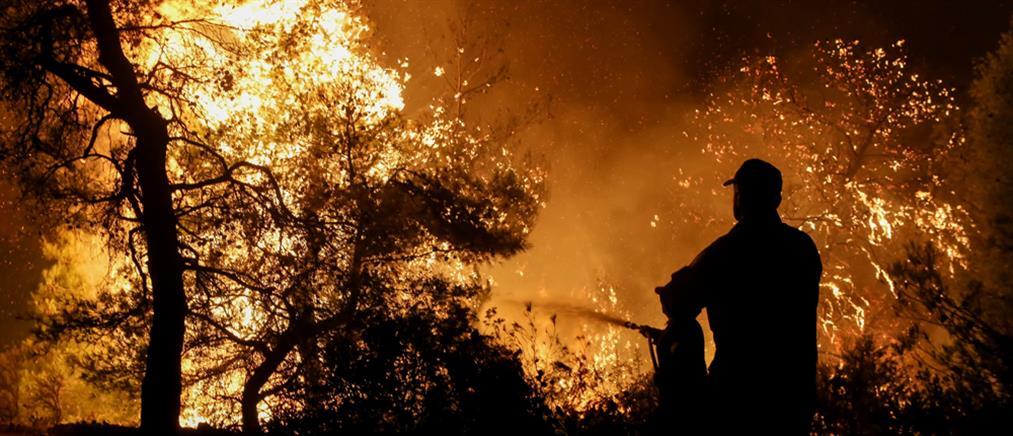 Φωτιά ξέσπασε στον Μαραθώνα