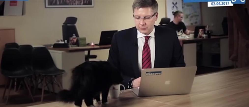 """Η γάτα του δημάρχου της Ρίγας """"έκλεψε"""" την παράσταση (βίντεο)"""