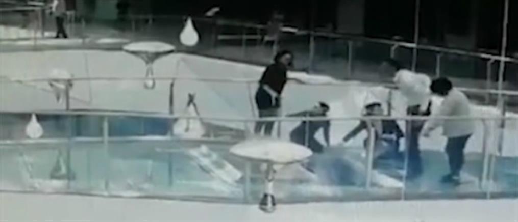 Γυναίκα έπεσε μέσα σε δεξαμενή με καρχαρίες (βίντεο)