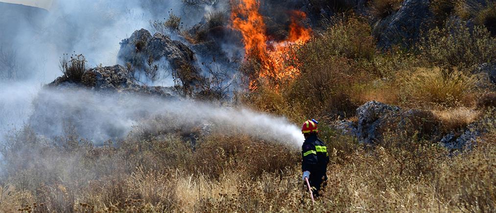 Φωτιά στην Πάργα