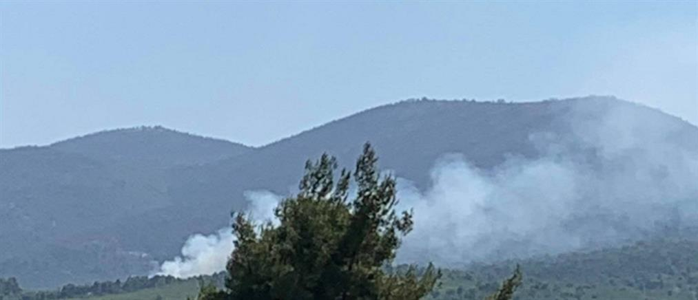 Φωτιά στο Χιλιομόδι