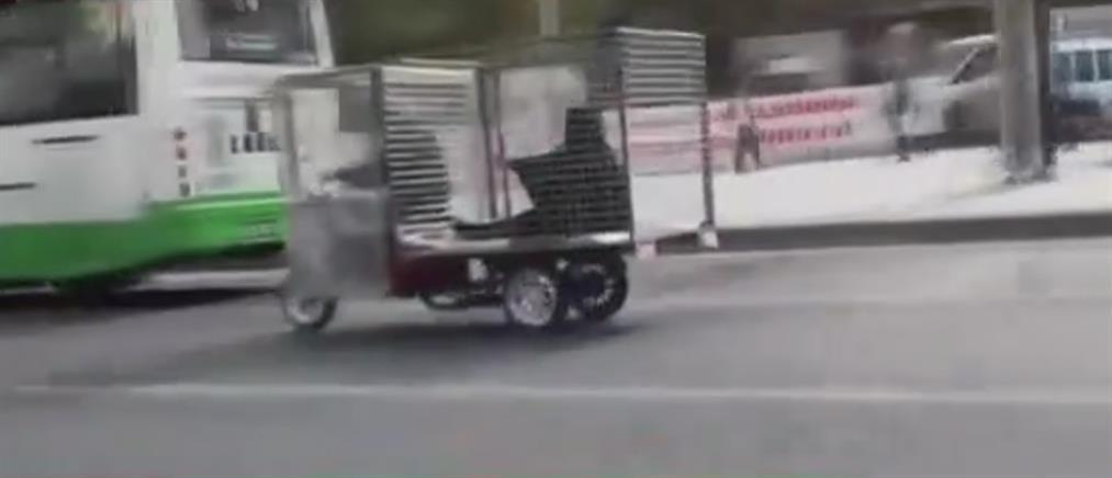 Γυναίκα μεταφέρεται μέσα σε... κλουβί στην Τουρκία (βίντεο)