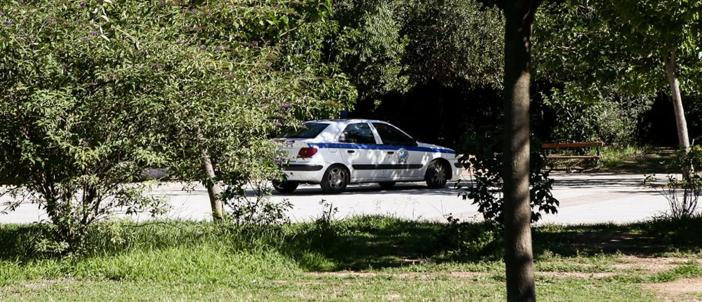 Αλλοδαπή συνελήφθη για εμπρησμό στο Πεδίον του Άρεως