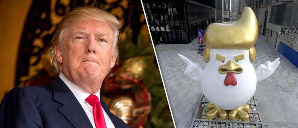 Ένας κόκορας με τη μορφή …του Ντόναλντ Τραμπ (φωτογραφίες)
